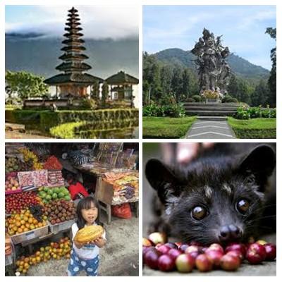 Bali Bedugul Tours