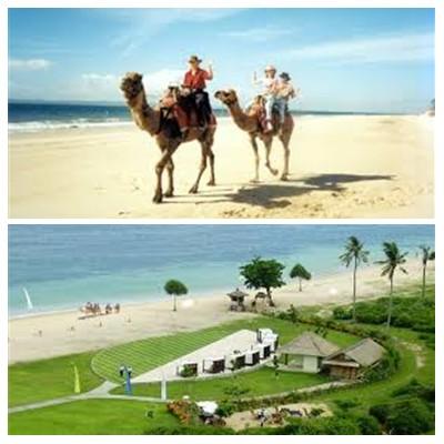 Bali Camel Safaris Tour