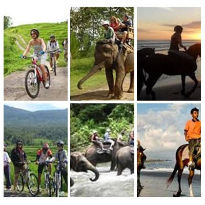 Bali Cycling, Elephant Ride and Horse Riding Tour