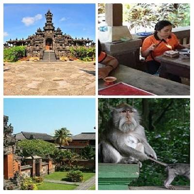 Bali Denpasar Ubud Tour