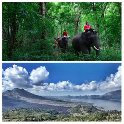 Bali Elephant Ride and Kintamani Tour