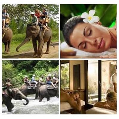 Bali Elephant Ride and Spa Tour