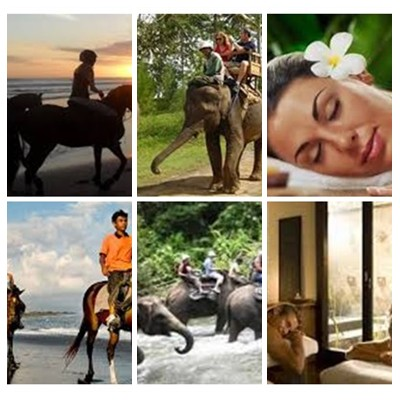 Bali Horse Riding, Elephant Ride and Spa Tour