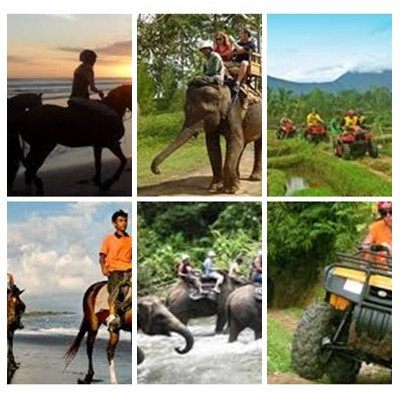 Bali Horse Riding, Elephant and ATV Ride Tour