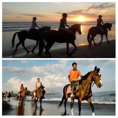Bali Horse Riding Tour
