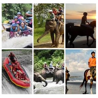 Bali Rafting, Elephant Ride and Horse Riding Tour