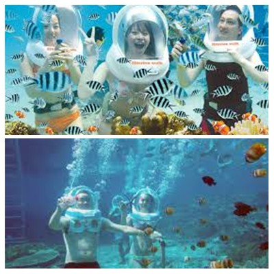 Bali Sea Walker Tour