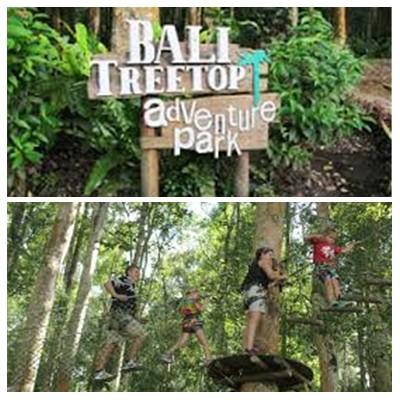 Bali Treetop Adventure Tour