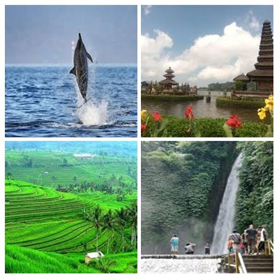 North Bali Tours